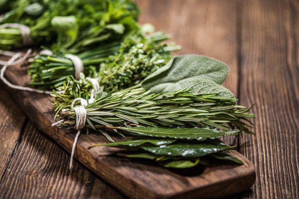Herbs101_Banner.jpg