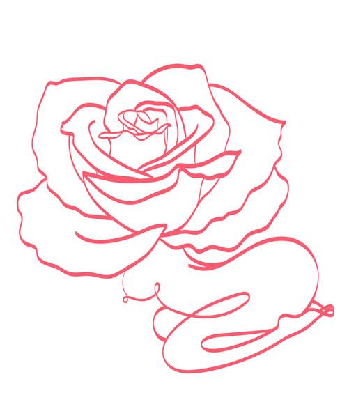 rose-fairy-9-SS.jpg