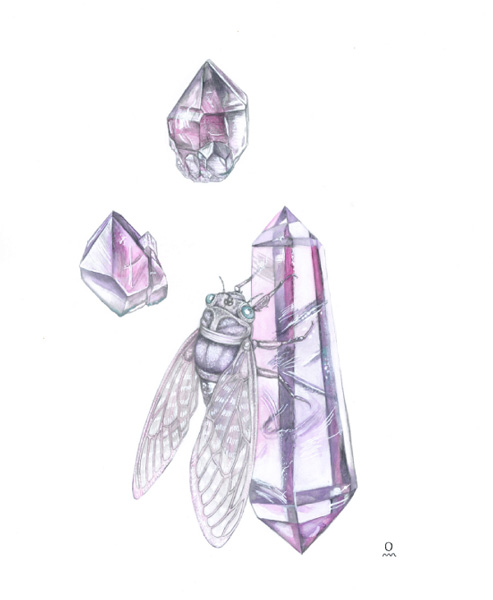 cicada-amethyst-SS.jpg