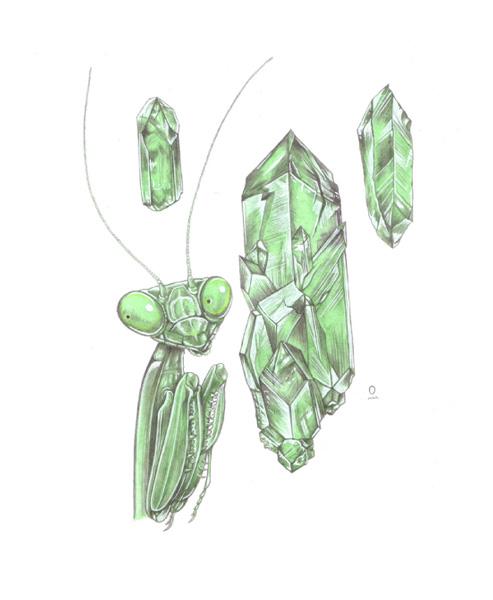 mantis-emrald-SS.jpg