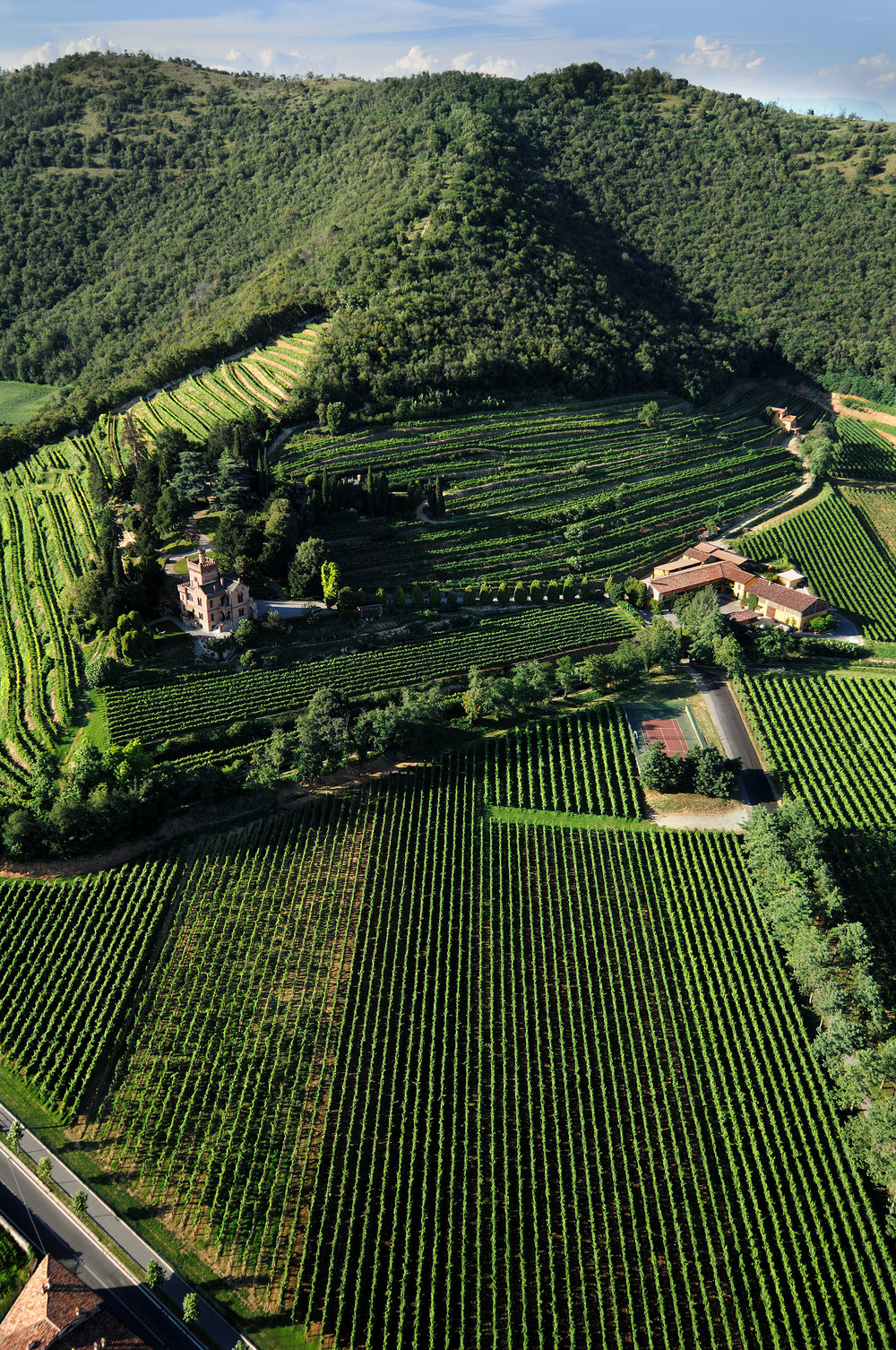 Castello-Bonomi_vineyards-and-castle.jpg