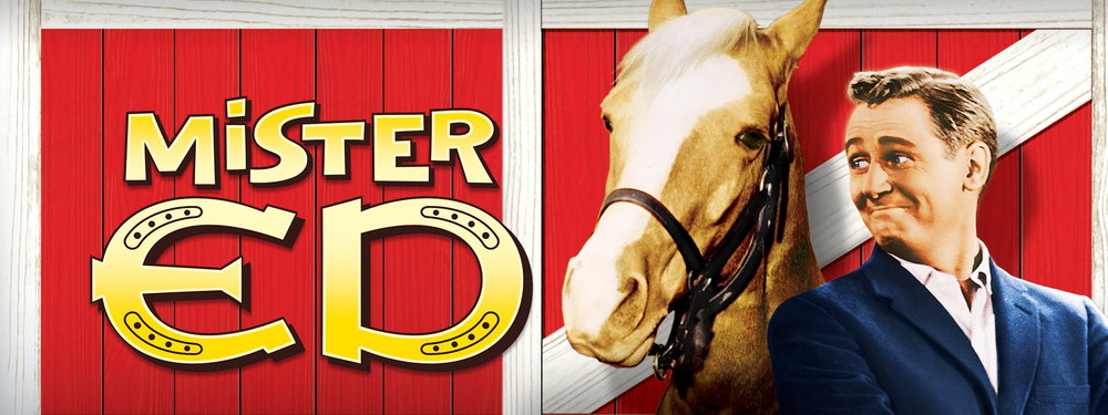 #8 - Mister Ed (6.7/10 Stars) - I'm not hallucinating. You're hallucinating.