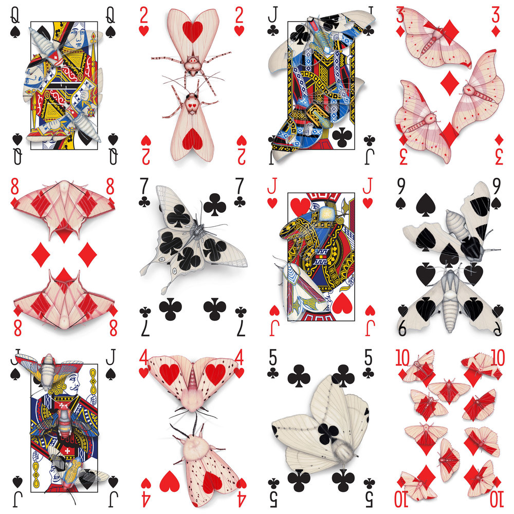 Image description; twelve playing cards with moths painted over the card faces to look like they are camouflaged on the cards.
