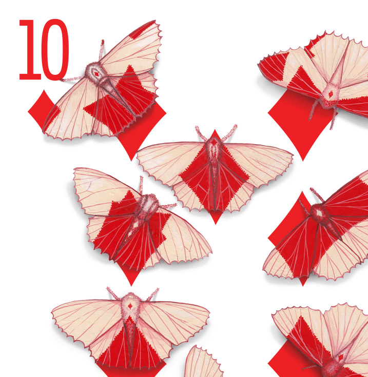 The corner of a 10 of Diamonds playing card design. The design has been hand-painted with moths that look like they have evolved a wing pattern that camouflages them on the card.