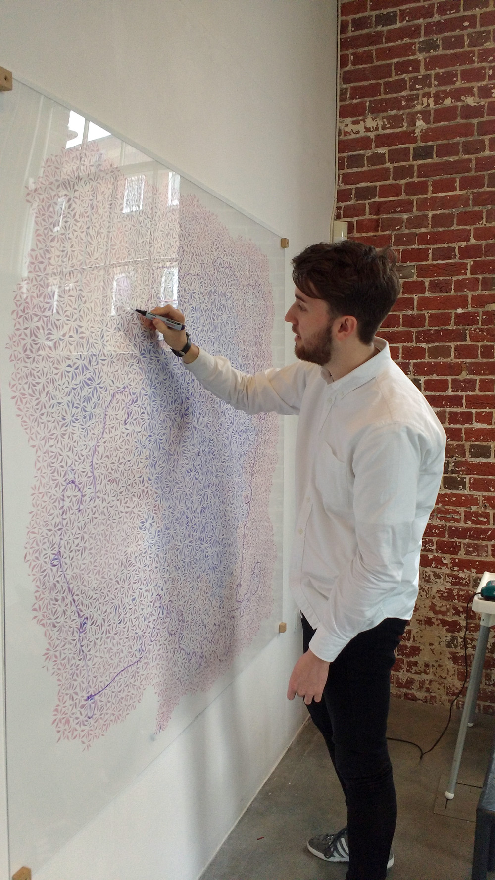 A person in a white shirt drawing over a very large pink and purple ink pattern behind a perspex sheet, with a purple dry-wipe marker pen.