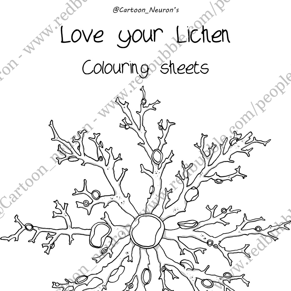 Colouring sheets commissioned for a workshop