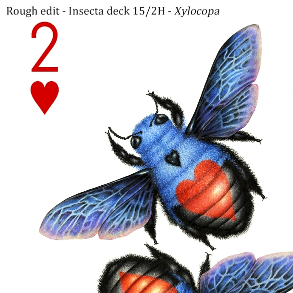 Image description; the corner of a 2 of hearts playing card design made in colour pencil. It features 2 blue and black bees, each with a red heart symbol on it's back.
