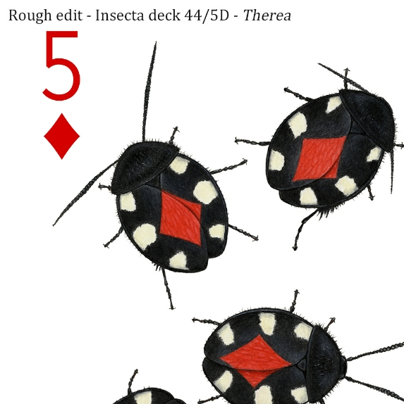 Image description; the corner of a 5 of diamonds playing card design made in colour pencil. It features 5 black and white blattodeans, each with a red diamond symbol on it's back.