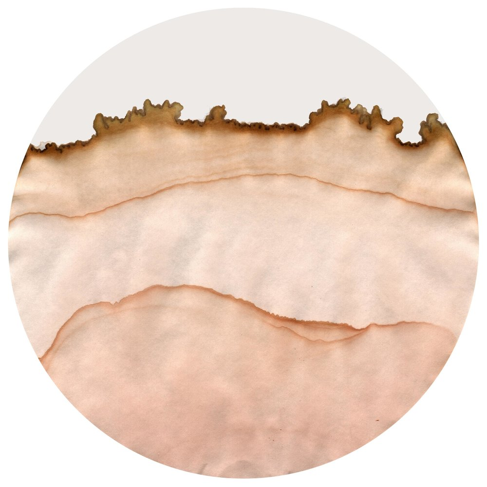 Chromoscape3sml.jpg