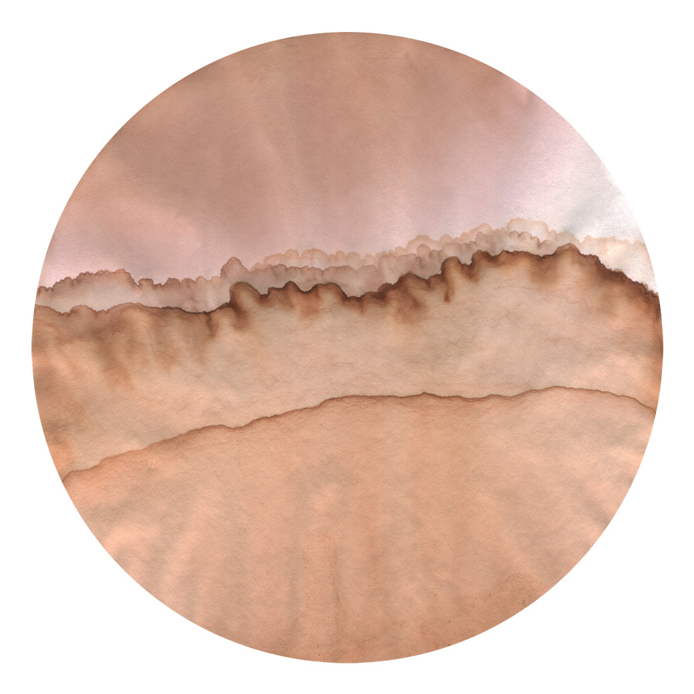 Lichenscape001a.jpg