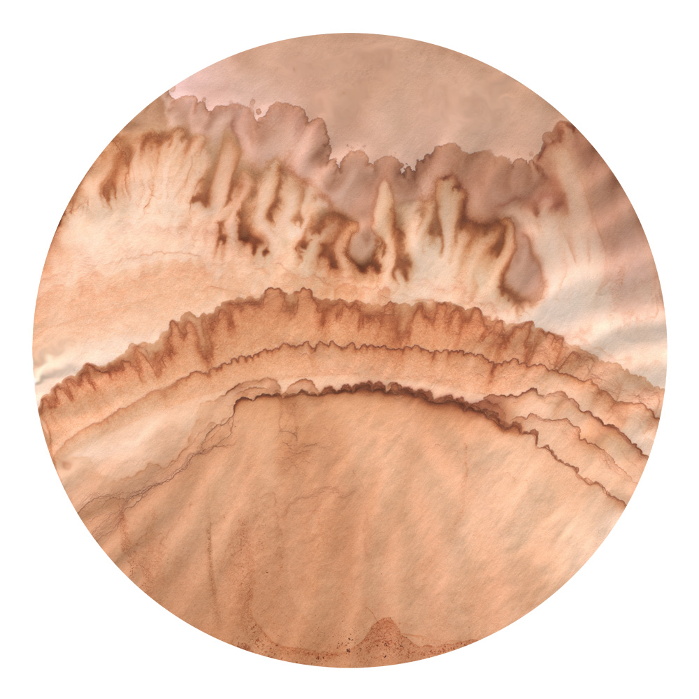 Lichenscape005.jpg