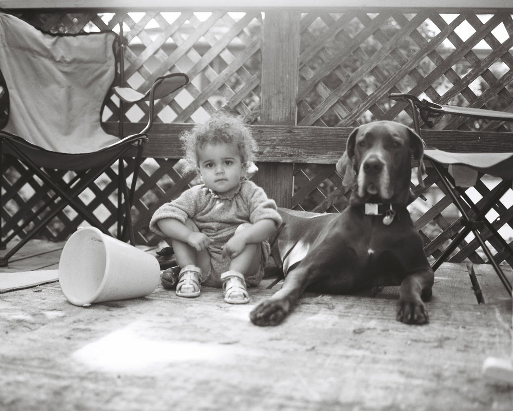 girl and great dane on film in california rachel sima photography