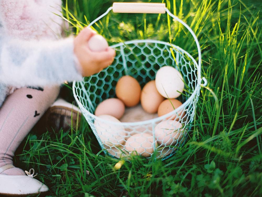 Spring Mini Sample-007.jpg