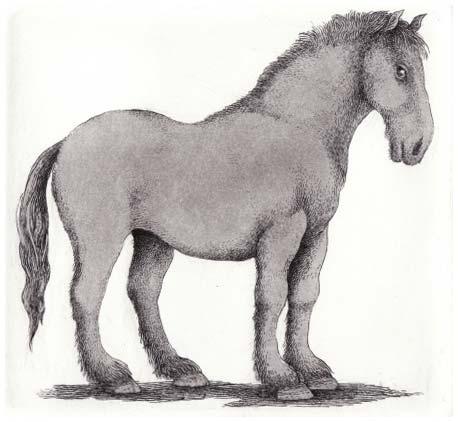 Farmer's Horse I (2009)