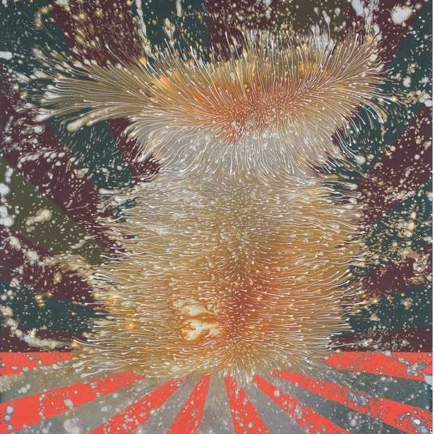 barbara-takenaga_harmo-2013_42-x-36_acrylic-on-linen1.jpg