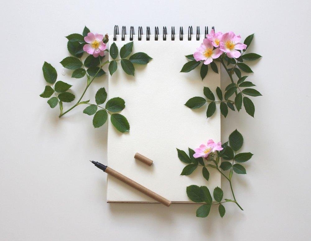 notebook-3397136_1920.jpg