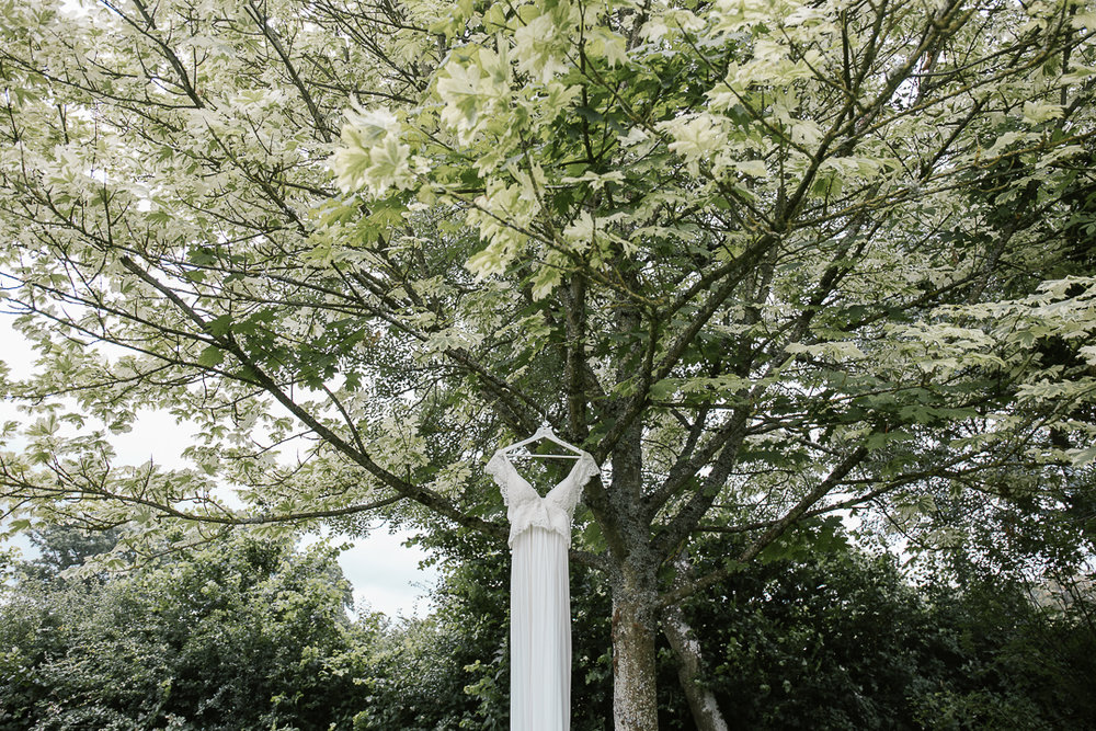 Anna Campbell dress hanging in a tree before the outdoor wedding ceremony