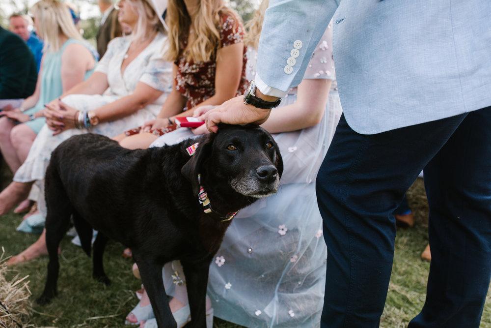 Tipi wedding, teepee wedding, tipi wedding photographer somerset wedding, somerset wedding photographer, cotswolds wedding photographer, DIY wedding, fun wedding, birmingham wedding photographer -143.jpg