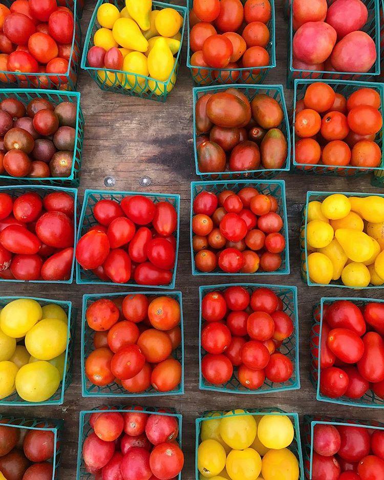 Slow Roasted Tomatoes -