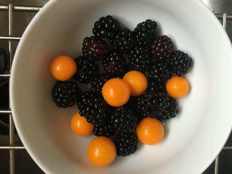 Tomatoes and Blackberries.jpg