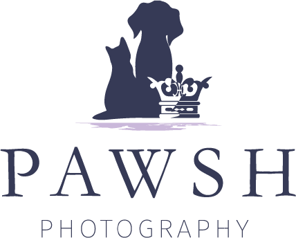 Pawsh Photography