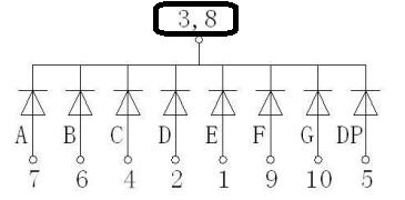 816.jpg