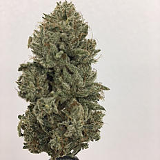 Cherry pie - indica dominant hybrid (80% indica/20% sativa) of granddaddy purple and durban poison. it's helpful for patients suffering with ptsd, migraines anxiety, and bipolar disorder.