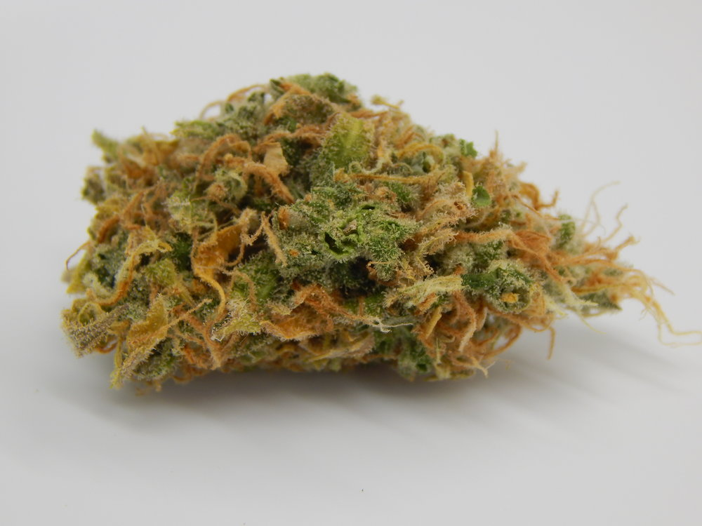 Agent orange - A sativa dominant hybrid (75% sativa/25% indica) of orange velvet and jack the ripper. This hybrid is useful in treating migraines, depression and anxiety. It has citrus smell and tastes like oranges.