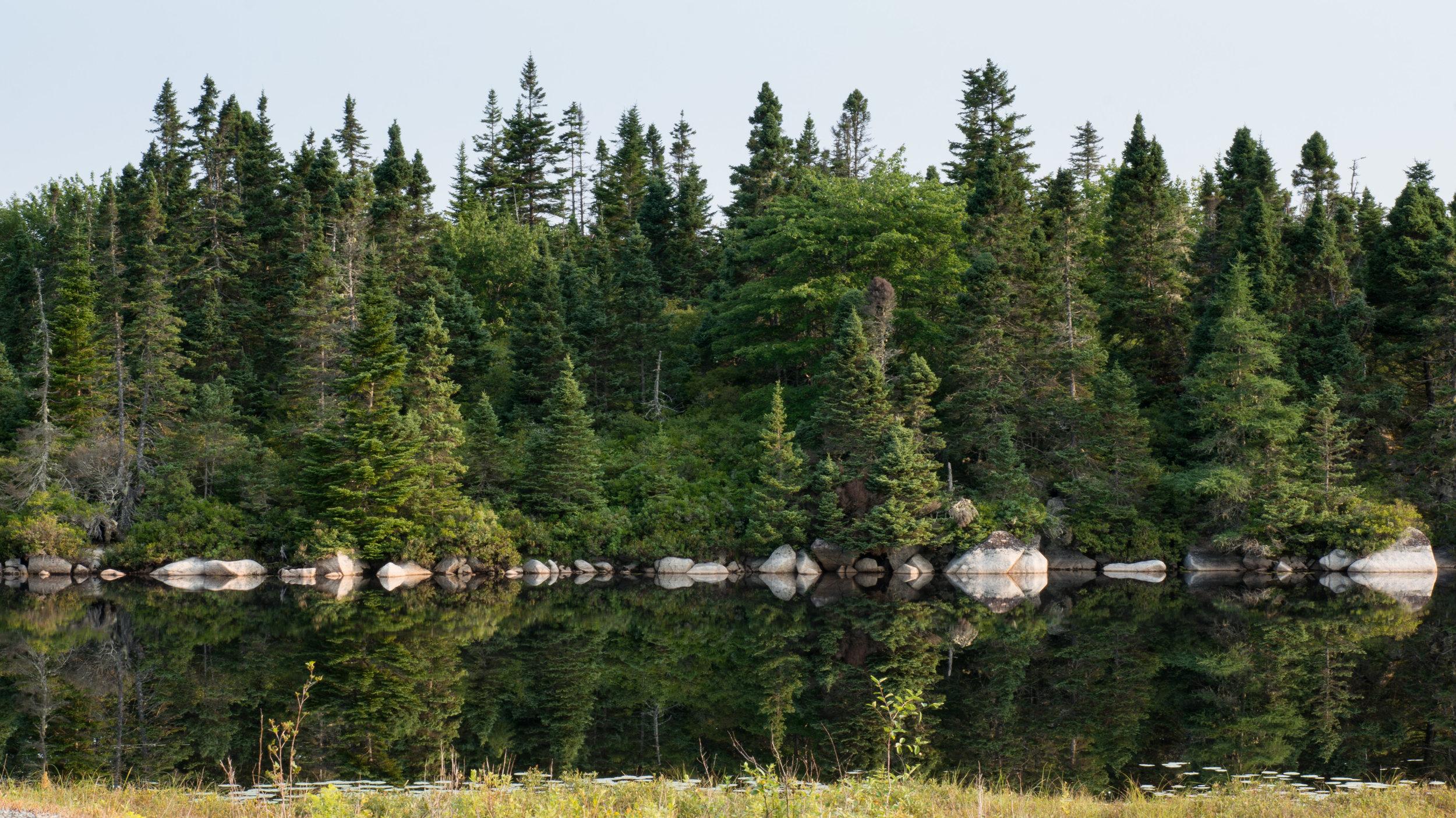 Lake near Peggys Cove, Nova Scotia.