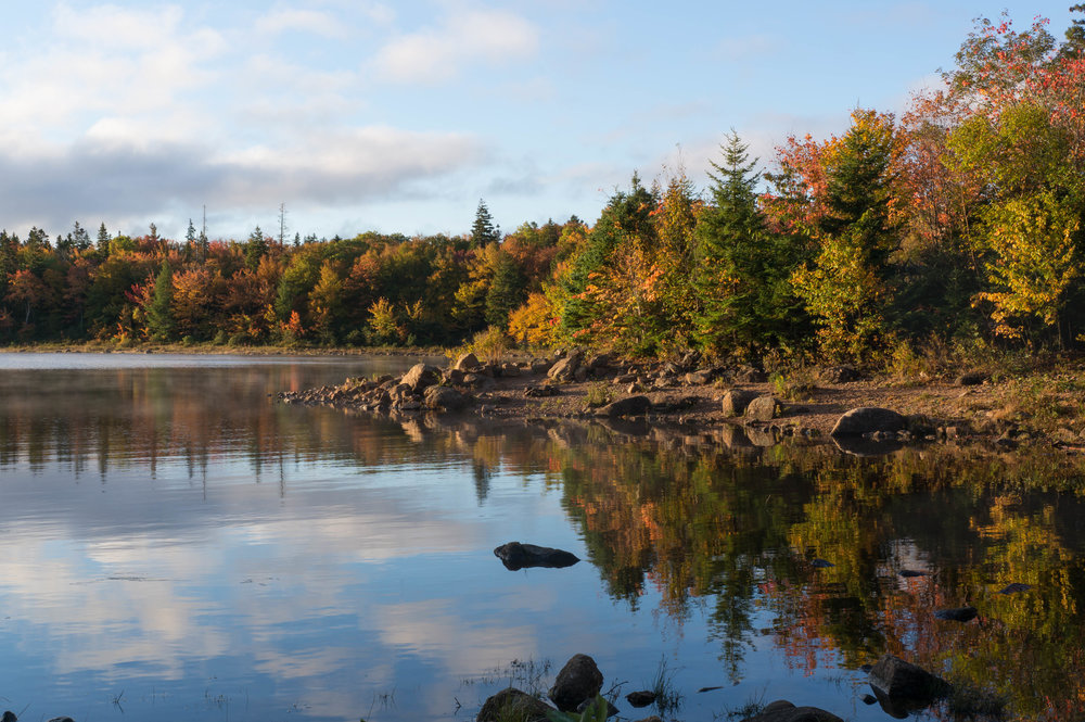 Autumn morning at Long Lake in the Halifax Regional Municipality. Photo by Becky