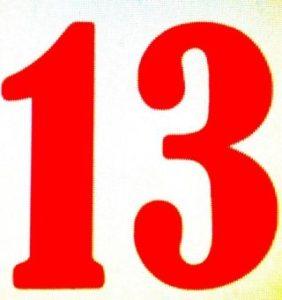 13-282x300.jpg