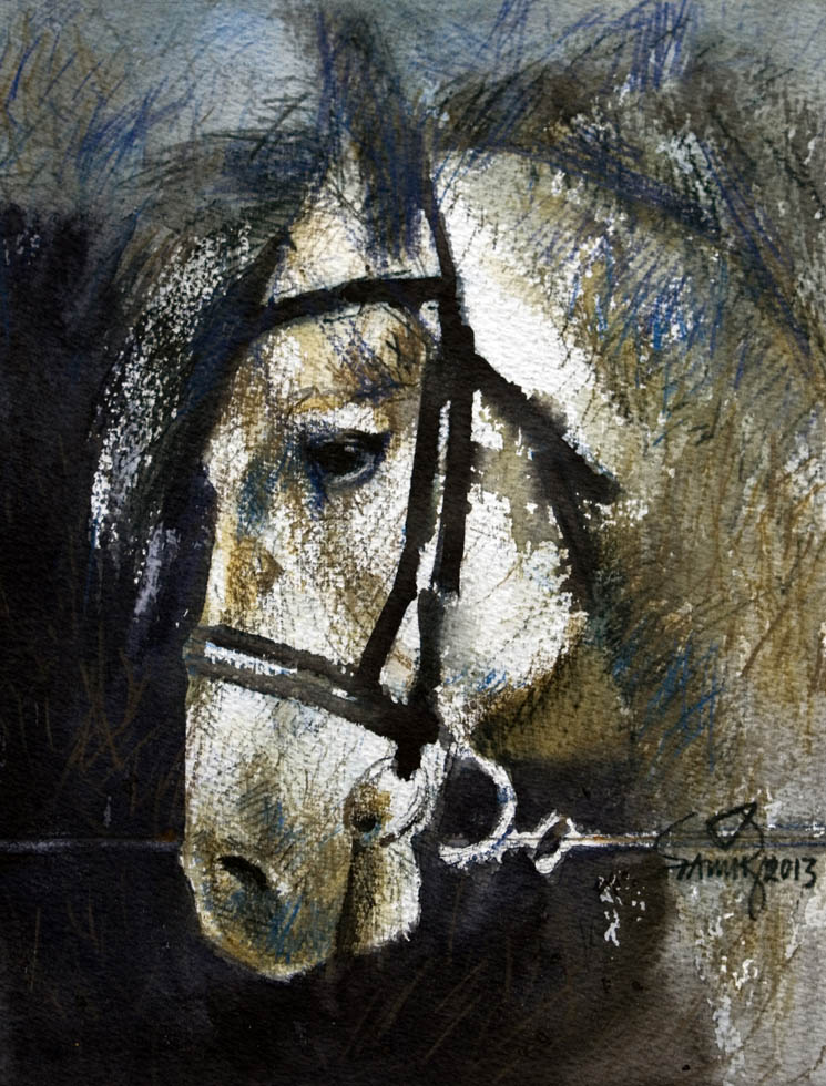 Horse - 02. Watercolour and pencil on paper, 110 x 7.6 inches, 2013. Art No. 11331.