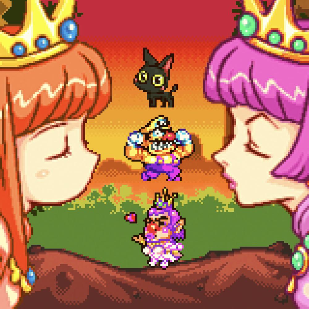 princess-shokora-wario-land.png