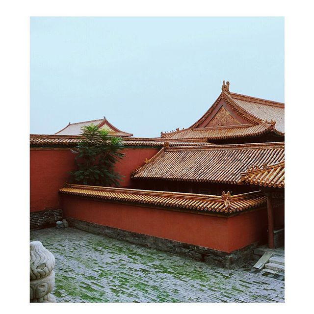 The color red is symbolic in many cultures. It can represent excitement, energy, passion and love in the west.  In eastern cultures, red is a very important color — symbolizing good luck, joy, prosperity, celebration, happiness, and a long life. @shopsouvenir Merry Christmas! ⠀ .⠀ .⠀ #shopsouvenir #escapetosouvenir #worldcultures #red #architecture #history #design #japaneseinfluence #designinspo #travelstyle #travelinspiration #shopsouvenir #escapetosouvenir #islands #hawaiitravel #holidays #festive #beauty #travelstyle #resortstyle #nature #designinspo #asianculture #worldtravel #passport #passportstyle #japaneseculture #colorful #happy #smile #happiness #luxuryresorts #travelbloggers