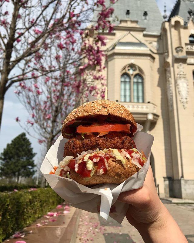Un prânz complet și delicios te ține în formă toată ziua! 💫 Burgerul Falafel, perfect pentru un post ușor și gustos!🤤 . . . #FranklyBurgers #vegetarianburger #falafel . . . . #falafelburger #vegetarianburger #vegetarian #vegetarianfood #yum #delicious #burger  #gourmet #burgertime #depost #mancaredepost #vegan #veganfood #vegetarianlife #burger