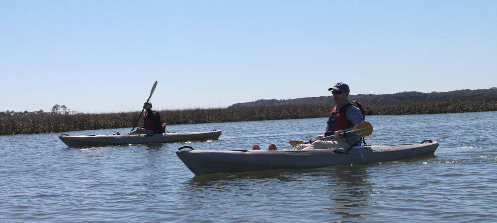 kayak-tours-amelia-island-banner1.jpg