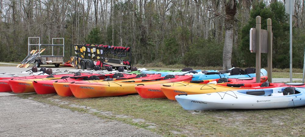 lofton-creek-kayak-tours-amelia-island-fl2.png