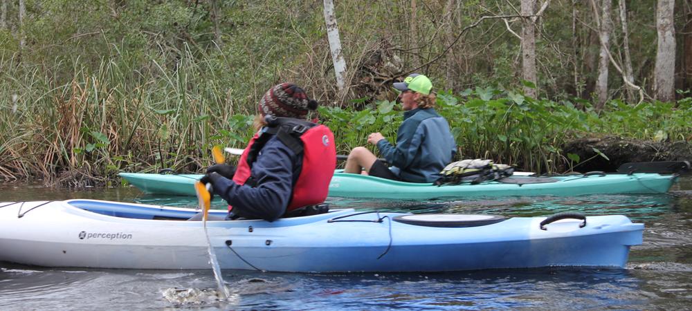 lofton-creek-kayak-tours-amelia-island-fl3.png