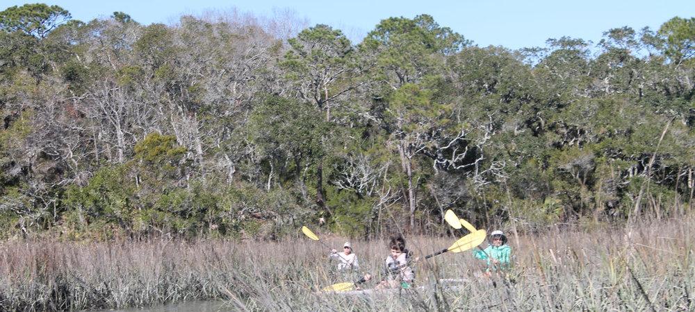 sup-and-kayak-tours-of-simpsons-creek-amelia-island-fl.jpg