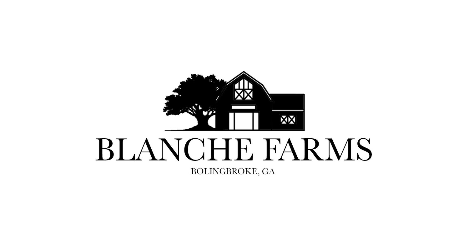 BLANCHE FARMS