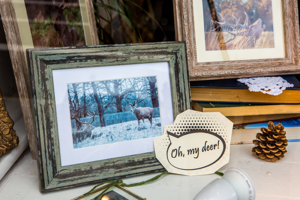 The Deer Whisperers, Leigh Gallery Window Display by Cristina Schek (76).jpg