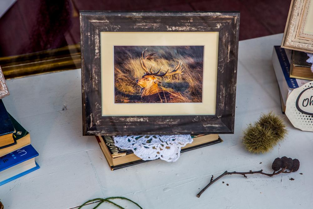 The Deer Whisperers, Leigh Gallery Window Display by Cristina Schek (107).jpg