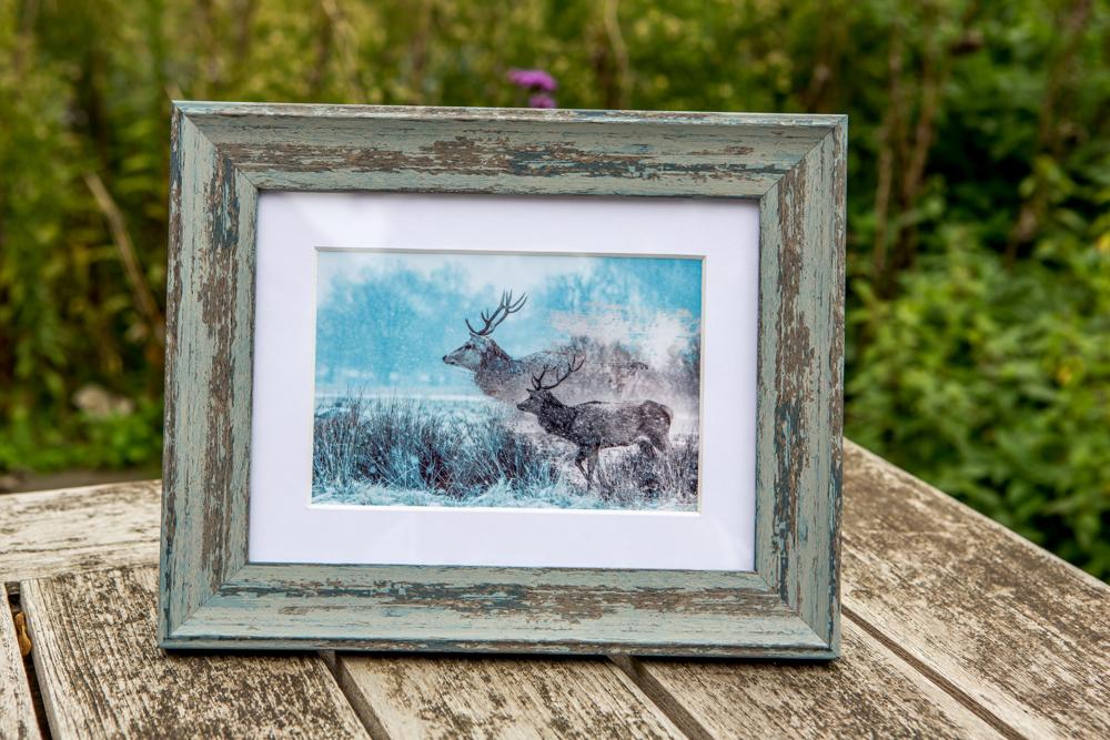 Wintery Deer in Bushy Park by Cristina Schek