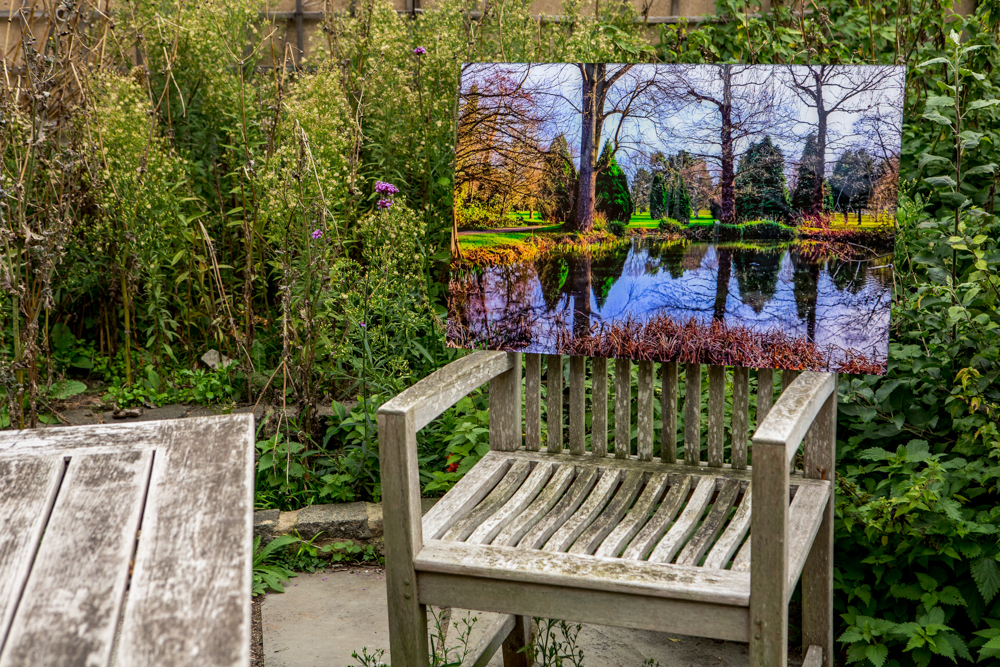 'Bushy Park' by Leigh Warnick. Perspex face mounted print.