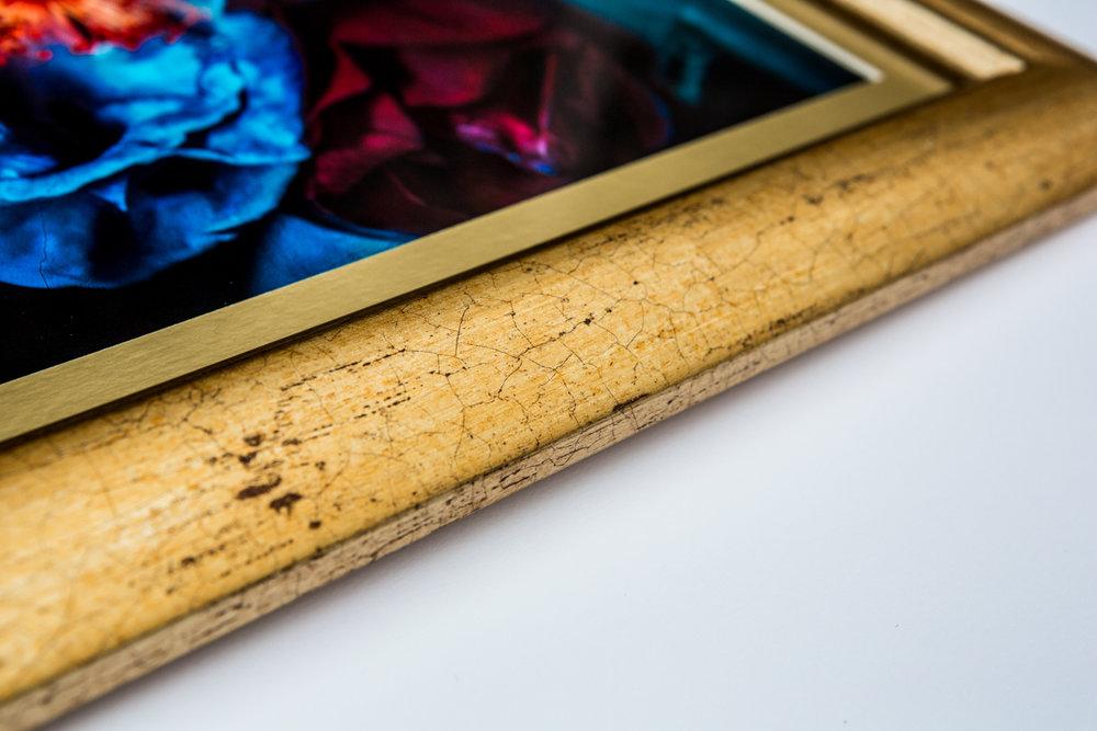 La Vie En Roses Series by Cristina Schek (17).jpg