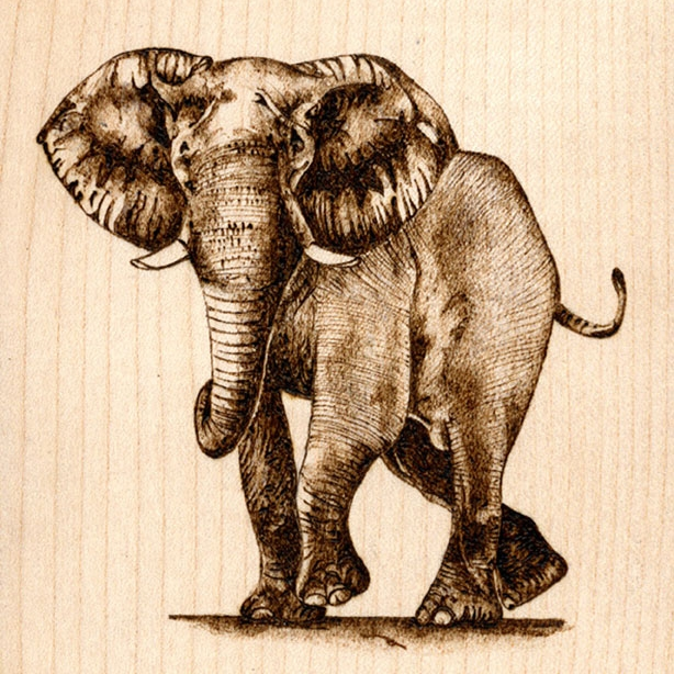 Pyrography Workshop - Learn more...