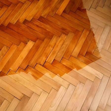 Finishes for the Woodworker - Learn more...