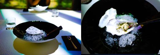Ultraviolet oyster