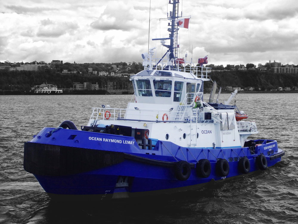 Our Vision - With its members' commitment and a proactive approach, St. Lawrence Shipoperators' vision is to be the reference in terms of domestic shipping on the St. Lawrence River.