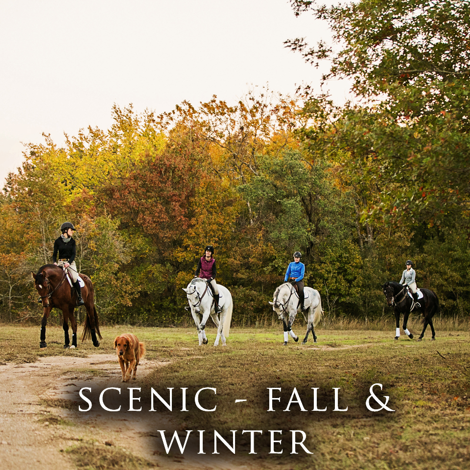 Scenic - Fall and Winter